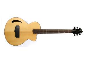 Willcox Guitars Atlantis Spruce