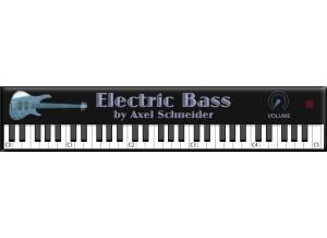 Axel Schneider Electric Bass