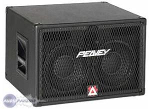 Peavey TVX 210