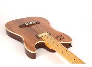 Godin 40th Anniversary Acousticaster