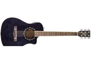 Fender T-Bucket 200CE [2013]