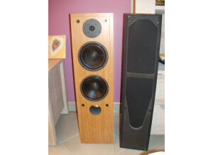 Davis Acoustics ORSAY