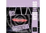 Soundscan 18-Funky Vocals