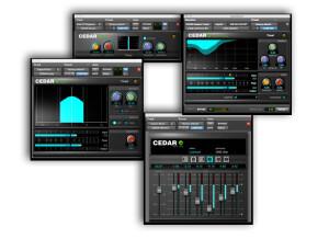 CEDAR Audio Cedar Studio