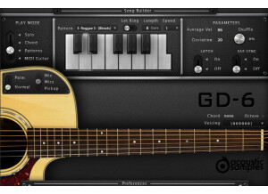 AcousticsampleS GD-6 Acoustic Guitar