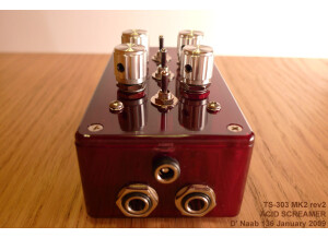 Analogue renaissance TS-303 MK2 ACID SCREAMER