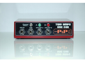 Plug & Play Amplification Two Amps One Cab