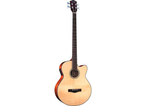 Fender GB 41SCE