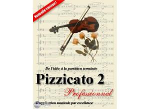 Arpège Musique Pizzicato Professionnel
