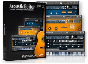 Pettinhouse AcousticGuitar 2