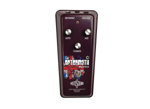 Rotosound RAM1 - The Aftermath Delay