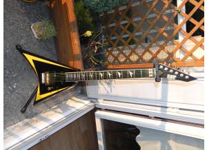 ESP RV-350