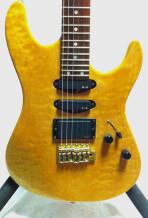 Valley Arts Guitars VALLEY ART