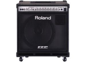 Roland D-Bass 115