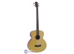 Johnson Guitars Herringbone bass