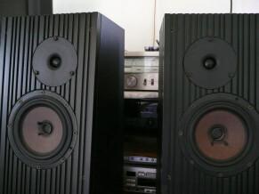 Royd Audio REGA ELA