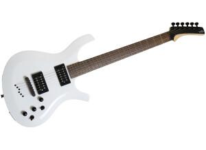 Parker Guitars PDF35