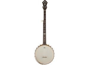 "Gretsch G9455 ""Dixie Special"" 5-String Open Back Banjo"