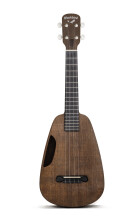 Blackbird Guitars Clara