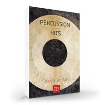 Spaectrum Arts Percussion Hits