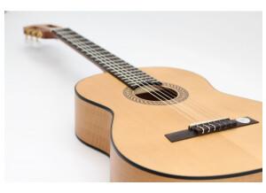 Hofner Guitars HF12
