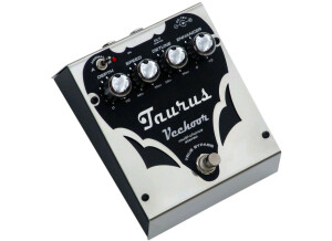 Taurus Vechoor