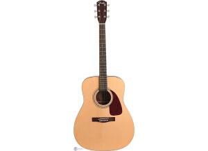 Fender DG-7