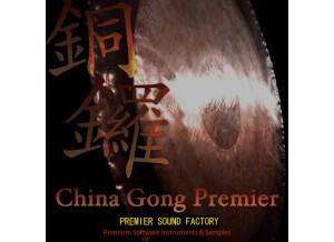 Premier Sound Factory China Gong Premier