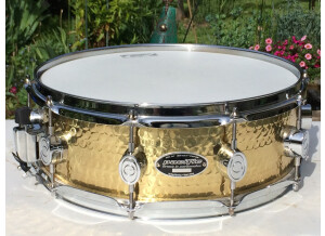 """PDP Pacific Drums and Percussion 5,0x14"""" SX by DW Ham. Brass"""
