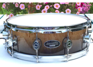 """PDP Pacific Drums and Percussion 5,5x14"""" LX by DW Kurillian Birch"""