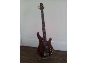 Sandberg (Bass) Basic Ken Taylor 5 Mahogany