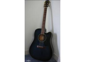Fender DG-22CE