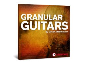 Steinberg Granular Guitars
