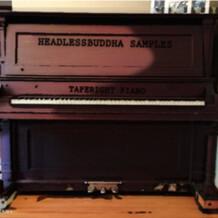 HeadlessBuddha Samples Taperight Piano Bundle