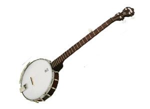 Deering Classic Goodtime 5-String Banjo