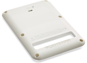 Fishman Rechargeable Battery Pack for Strat