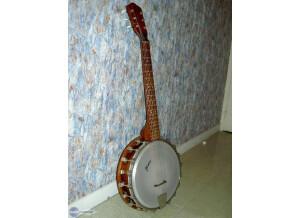 Framus Guitare Banjo 6 cordes