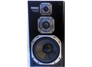 Yamaha NS-300X