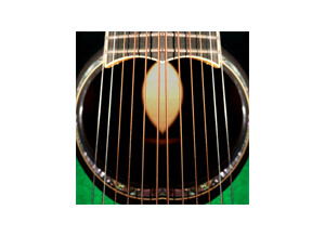 Replika Sound RSGL05 Chorus Guitar