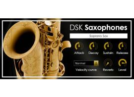 DSK Music DSK Saxophones