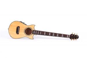 Lindo Guitars Voyager