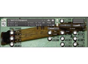BIGcat Instruments Spt3125 Kayageum