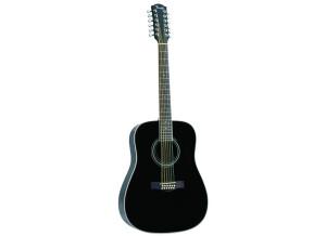 Fender DG-16-12