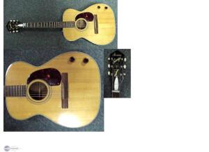 Harmony (String Instruments) H55 Sovereign (folk)