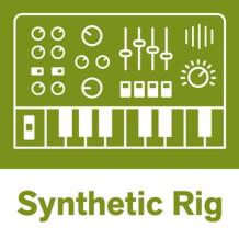 Reason Studios Synth Rig