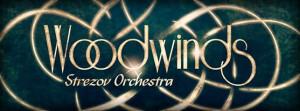 Strezov Sampling Woodwinds - Bassoons