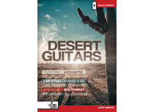 In Session Audio Desert Guitars