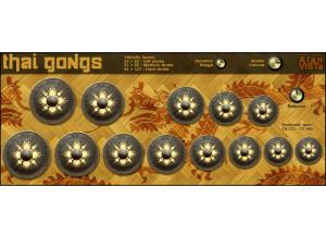 Alan ViSTa Thai Gongs