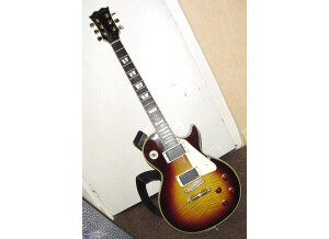 Fenix by Young Chang Les Paul