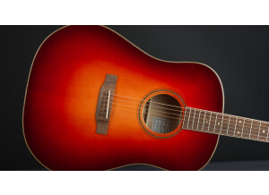 Bedell Guitars Bedell Wildfire Dreadnought